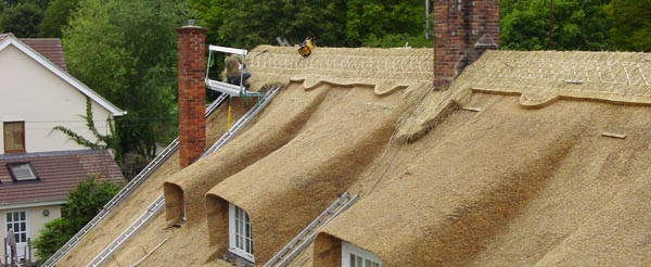 thatch near completion