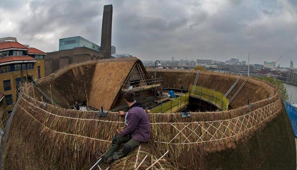 Kit Davis & Co repairing and rethatching the Globe Theatre, London